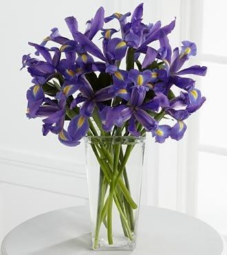Blue Irises Ready For Delivery In Vancouver Bc Canada Flowers Delivered Flower Delivery Flower Arrangements