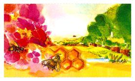 Deutscher Honig: Blütenland Bienenhöfe, Bioland,  - auch Bienenwachskerzen