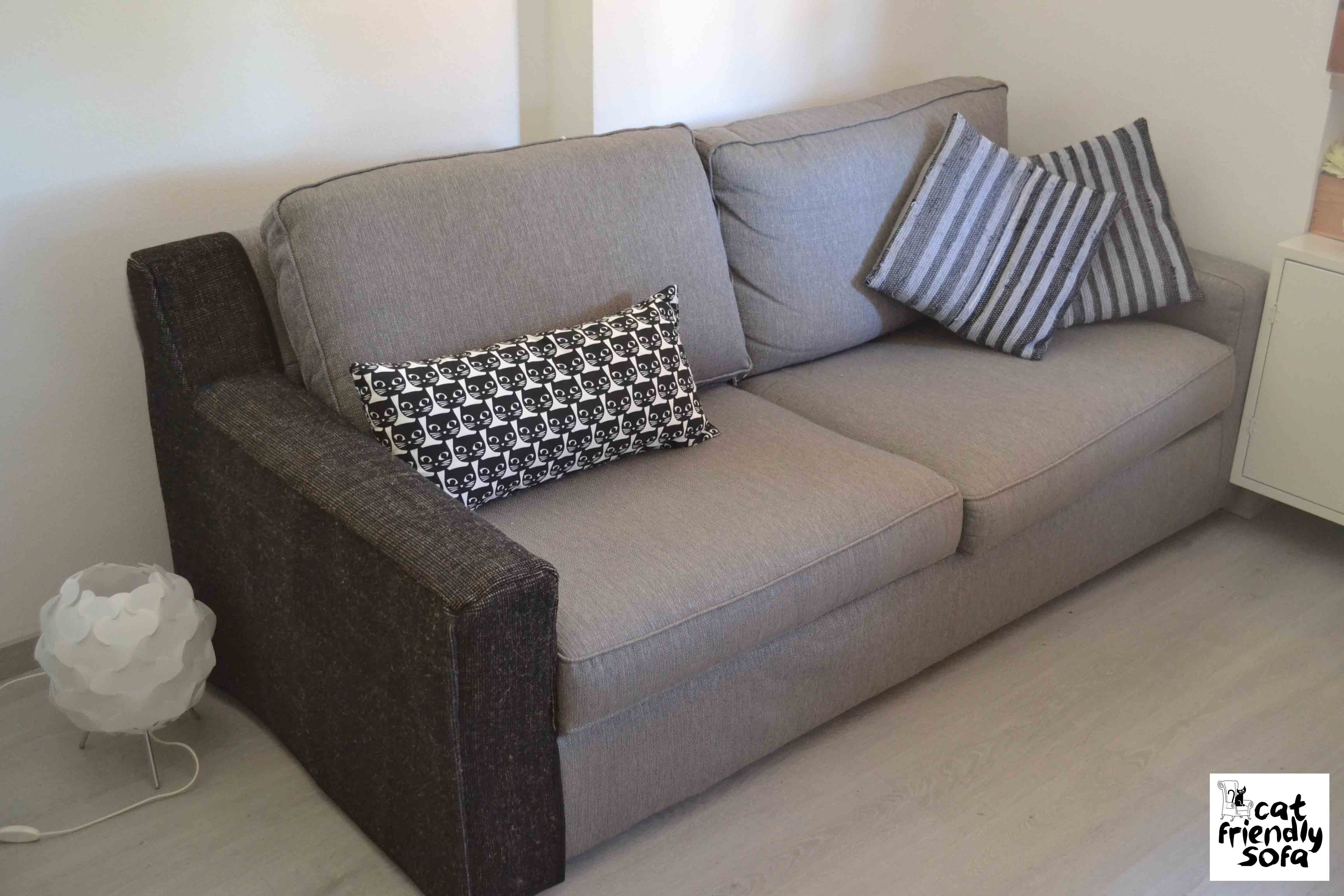 Couch With Single Arm Protected