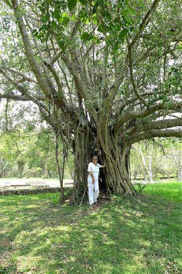 World heritage: Anuradhapura.