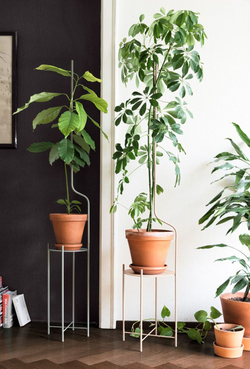 This Plant Stand Is Designed To Support Plants As They Grow Plant Stand Modern Plant Stand Plants