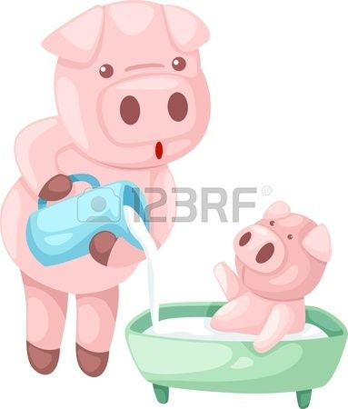 pig vector Illustraiton
