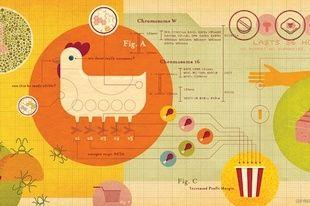 Jude Buffum Infographics