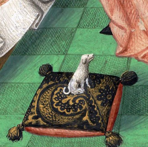 doggy pillowGuillelmus Fichetus, Rhetorica, Paris 1471Cologny, Fondation Martin Bodmer, Cod. Bodmer 176, f. 1r