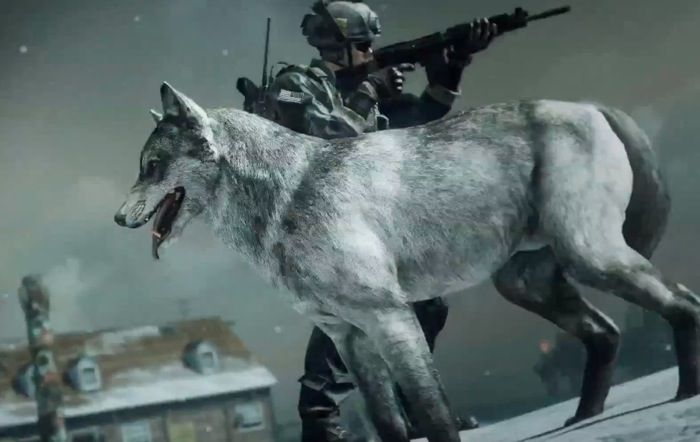 Me & My Wolf on COD Ghosts Ruins Map – Call of Duty: Ghosts Gameplay