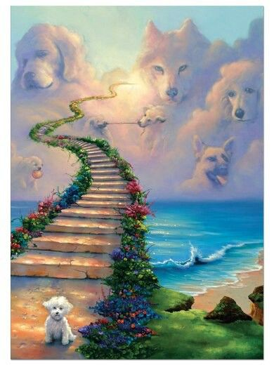 All dogs go to Heaven | Something pretty | Pinterest ...