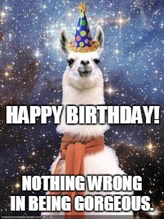 Your Lol Message Funny Birthday Wishes For A Friend Happy Birthday Llama Happy Birthday Meme Happy Birthday Funny