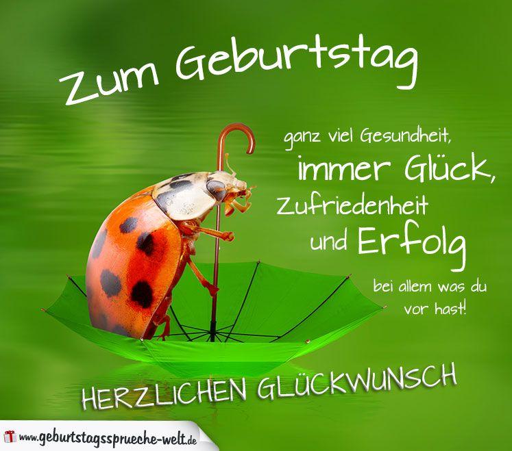 Gluckwunschkarte Zum Geburtstag Mit Marienkafer Auf Regenschirm