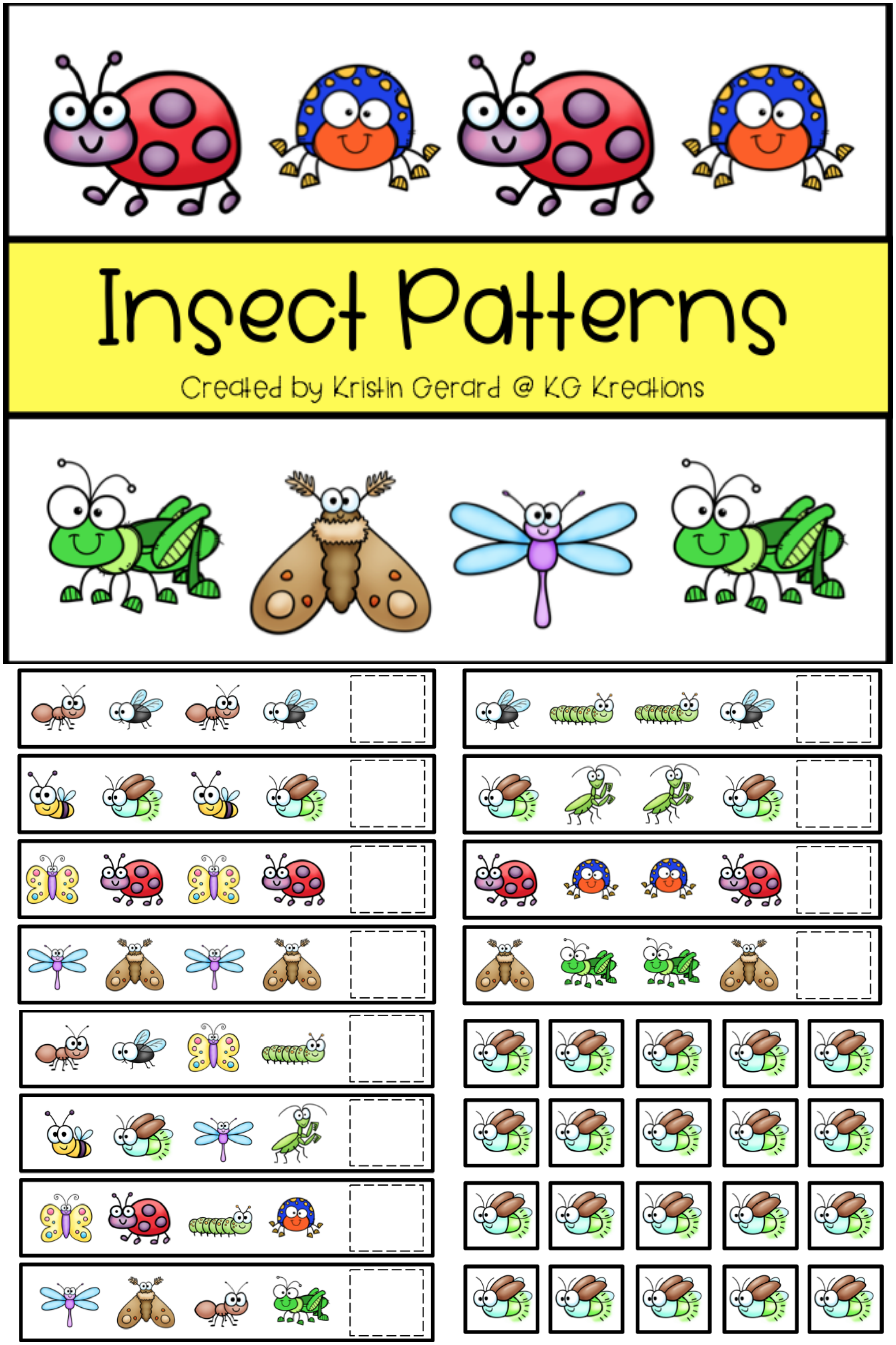 Pattern Cards Insects