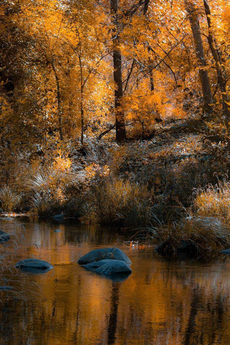 Cathedral Rock, Sedona, AZ is a photograph by Rick ...  |Sedona Fall Scene