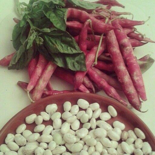 porotos granados beans #deysita