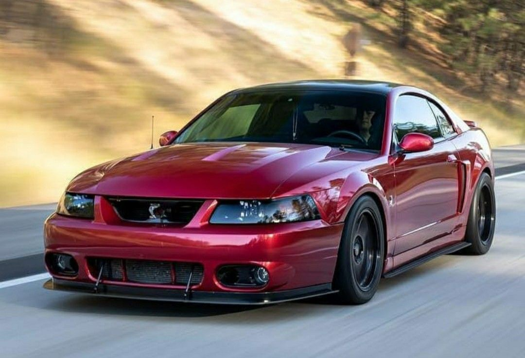 Pin By Jay On Mustang In 2021 Mustang Cobra 2004 Ford Mustang Ford Mustang Cobra