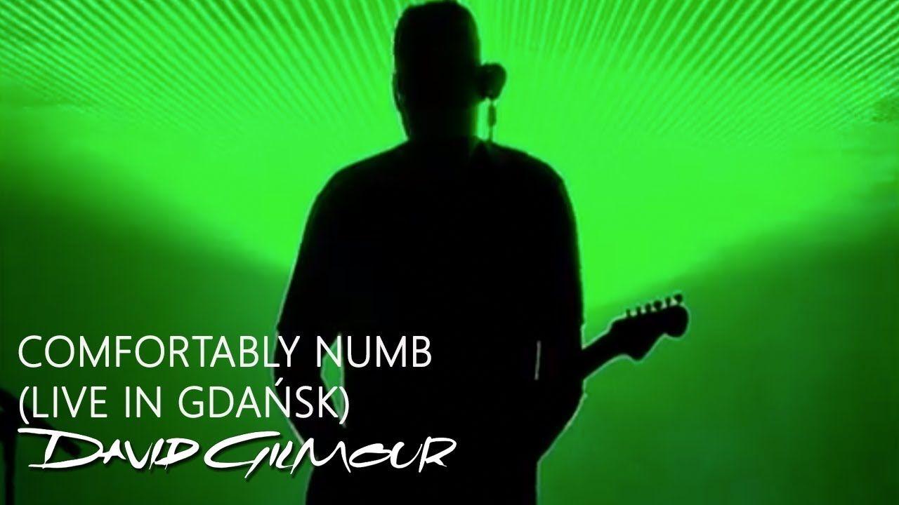 David Gilmour Comfortably Numb Live In Gdansk Astas