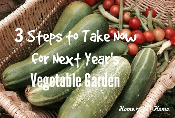 3 Steps to Take Now for Next Year's Vegetable Garden