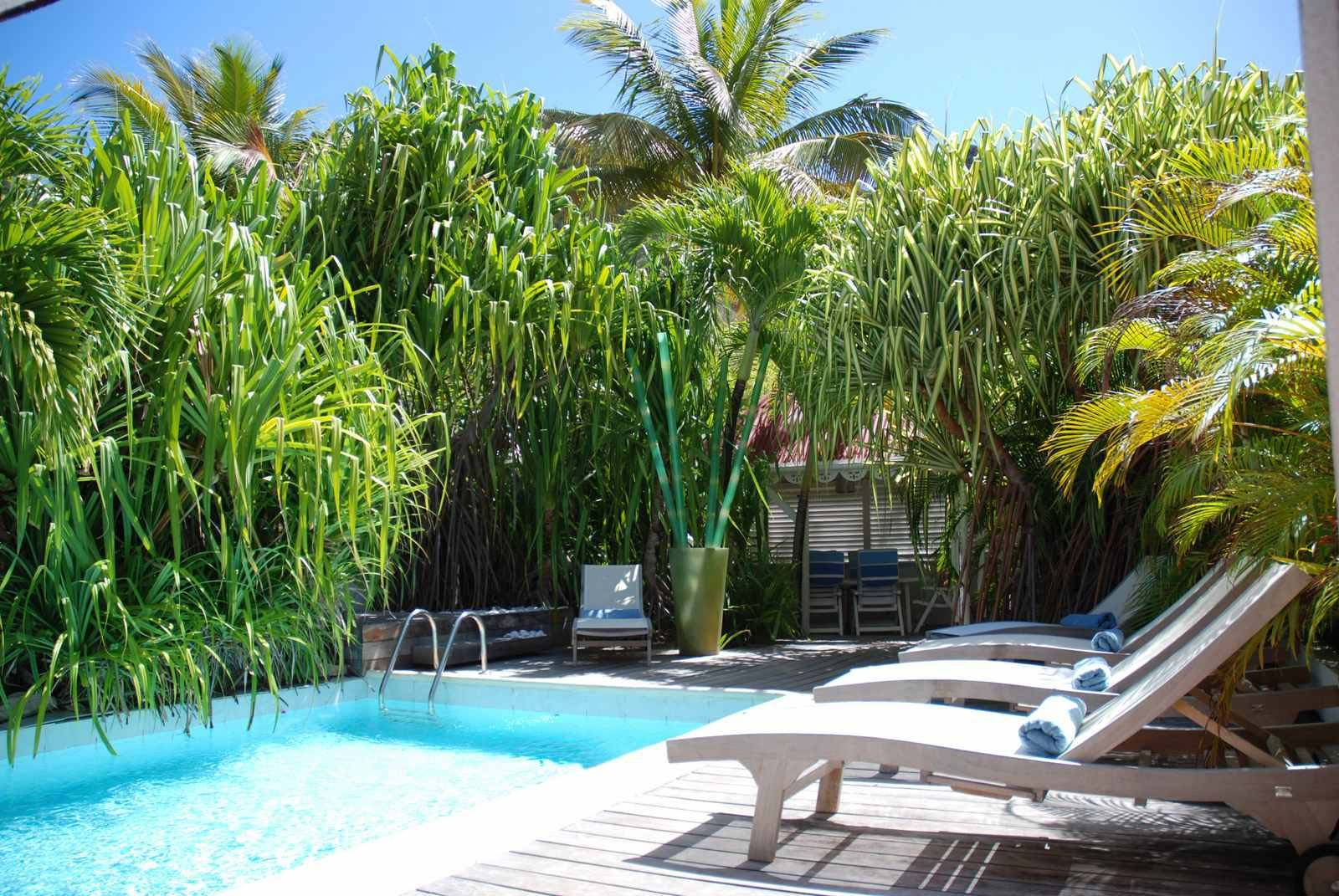 → Salines Garden | Hotel Swimming Pool Saint Barthélemy | Official ...