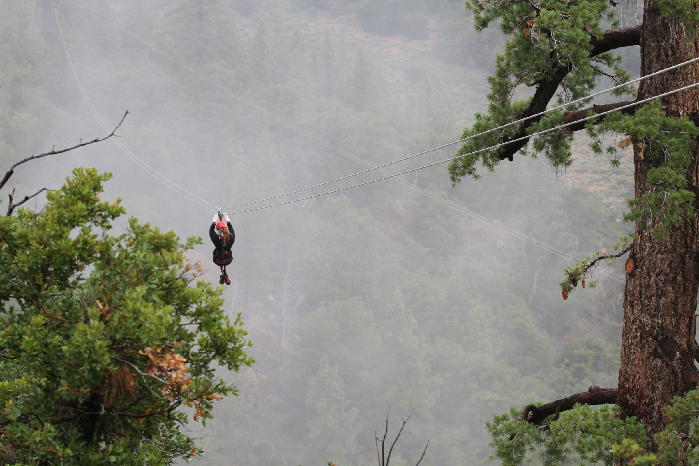 Ziplines And Rope Bridges At Navitat Canopy Adventures Wrightwood California
