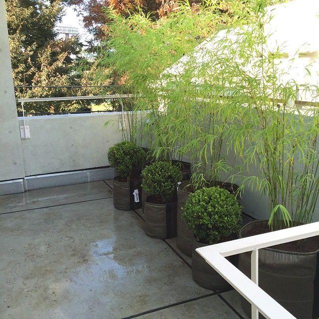 pot rond 50l bacsac chez vous pinterest g otextile les plantes et pots de fleurs. Black Bedroom Furniture Sets. Home Design Ideas