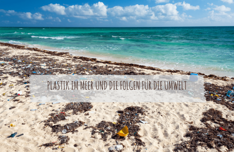 Plastik Im Meer Bilder