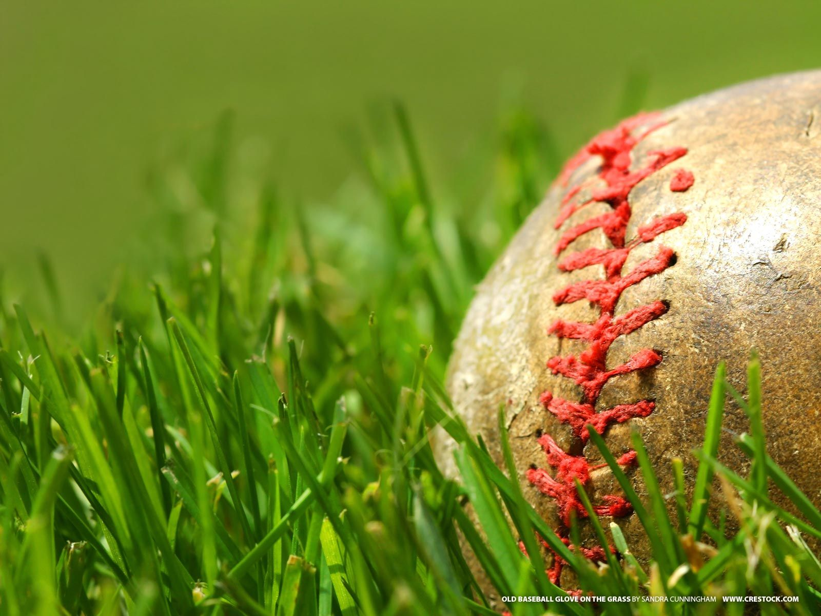 cool free hd baseball desktop wallpapers images and backgrounds