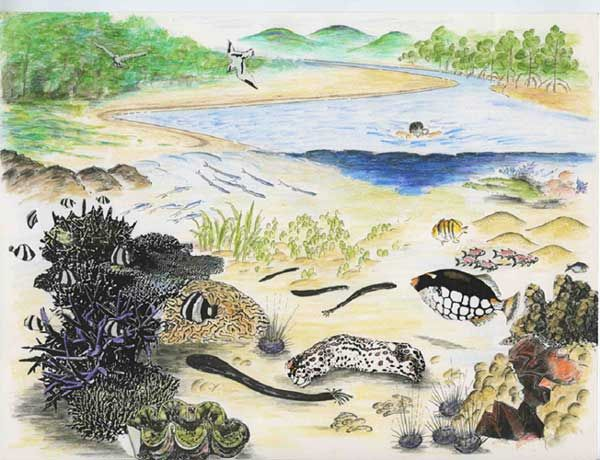 Ecosystem Diversity refers to the different types of ecosystems we