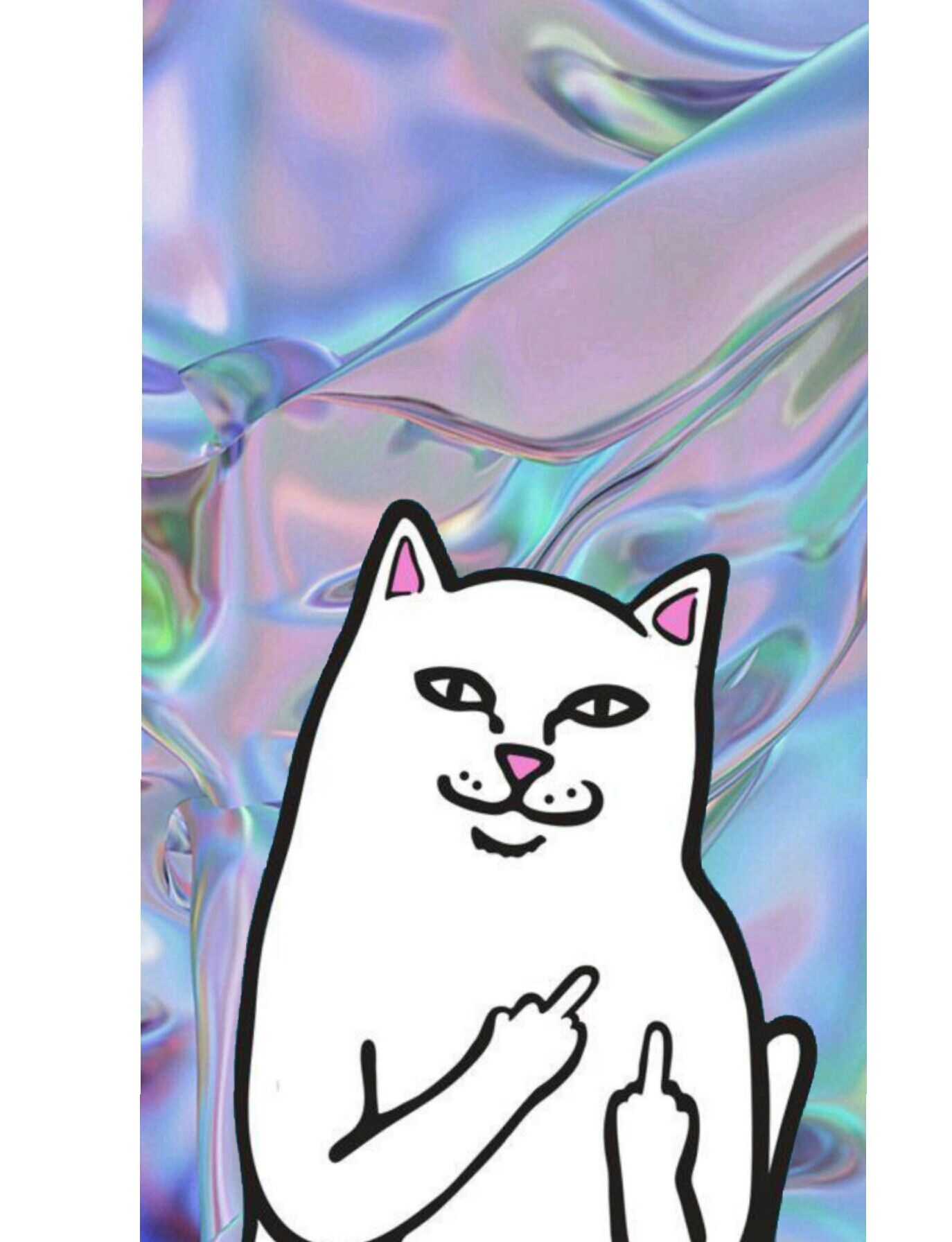 Kitten iphone wallpaper tumblr - Ripndip Ripndip Wallpaper