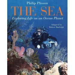 Book Ideas: Ocean Theme