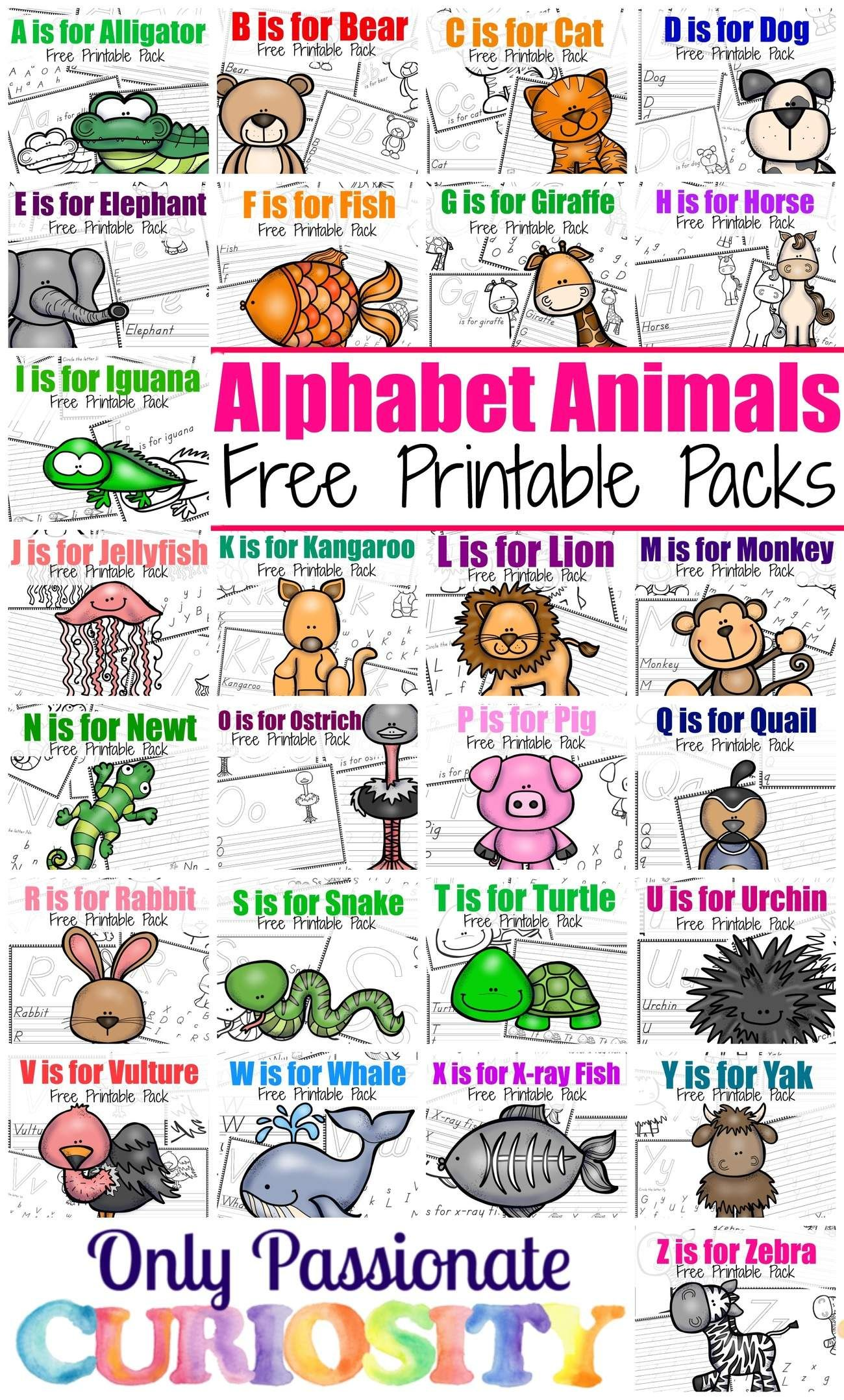 Welcome To Our Abc Printable Series These Packs Are