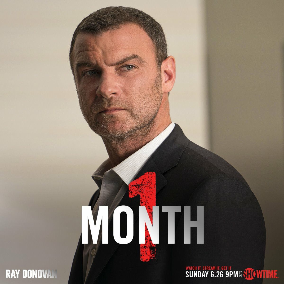 Ray Donovan   Liev in ...