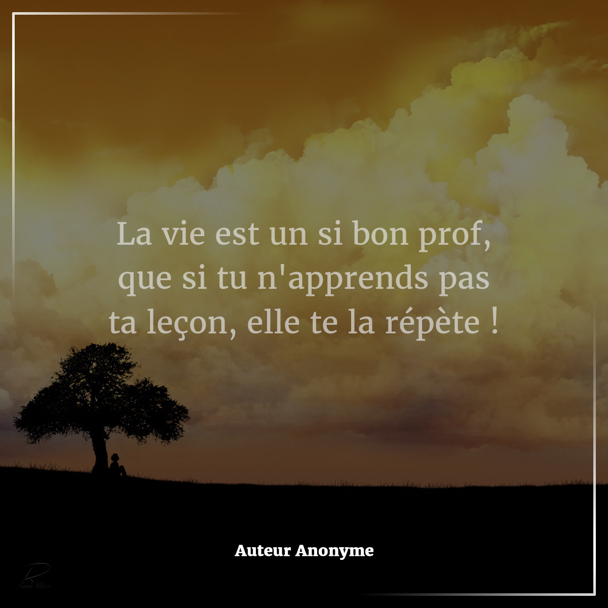 Citation Du Jour Attitude Pensée Positive La Vie