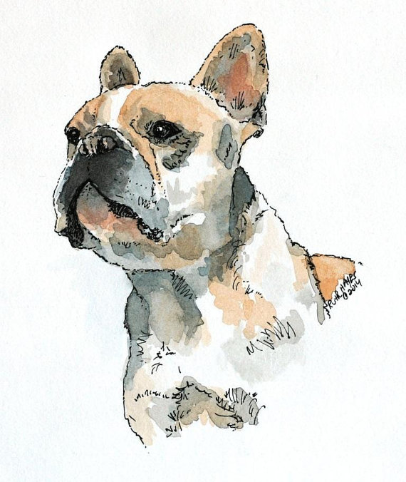 Pet Portrait Custom Dog Portrait In Watercolour By Petartgallery