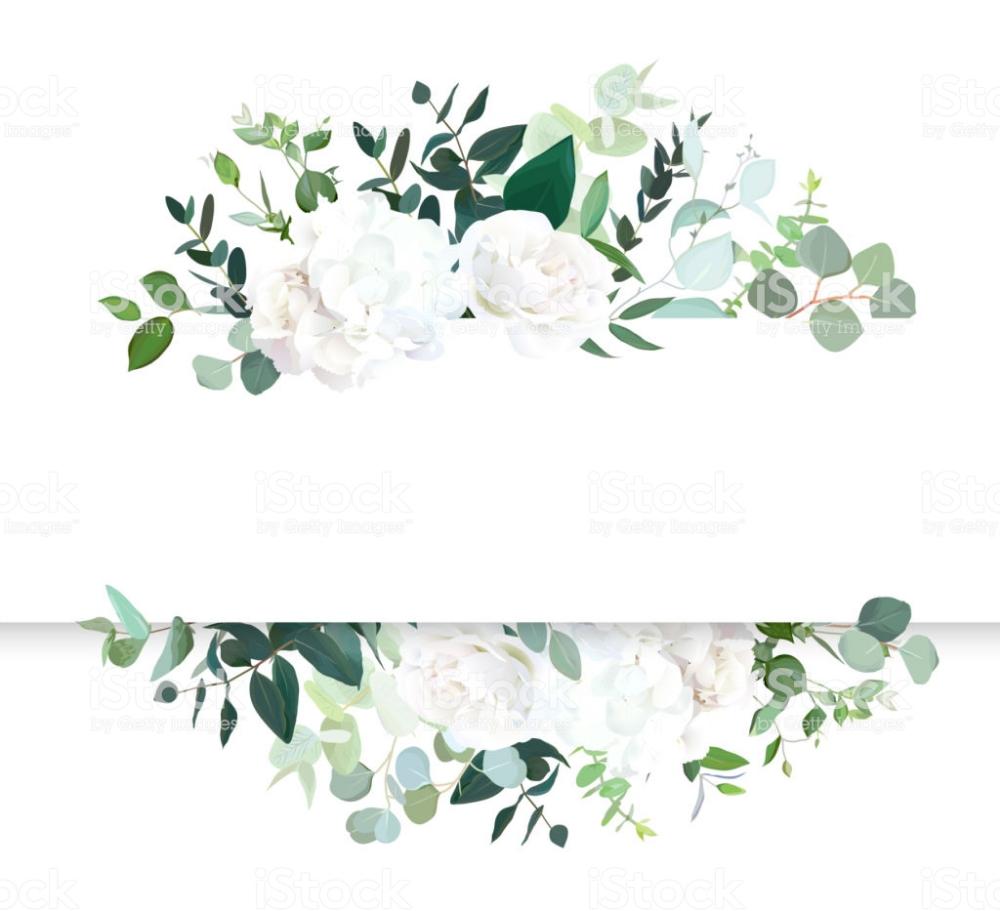 Wedding Floral Horizontal Vector Design Banner White Rose And Banner Design Floral Poster Vector Design