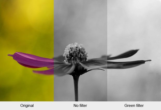 Black and white filters let you control how colours are converted to shades of grey use them to get the right contrast and mood in your photos
