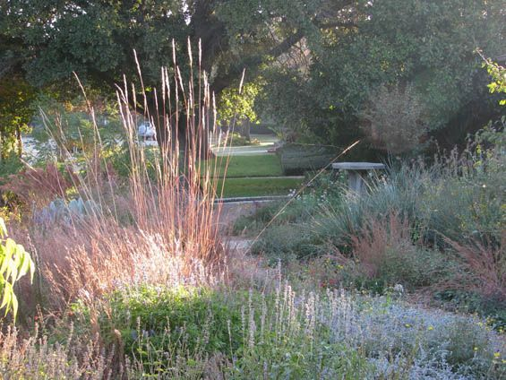 March 2011 Prairie Garden Texas Native Landscaping Landscape