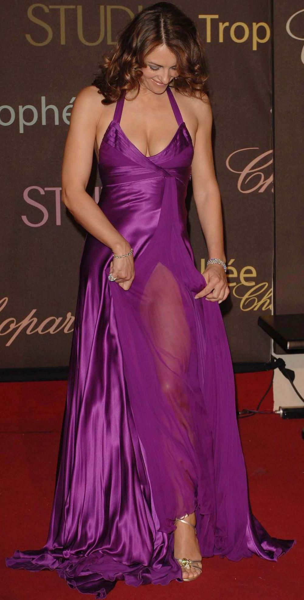 Rather Elizabeth hurley see through dress something is