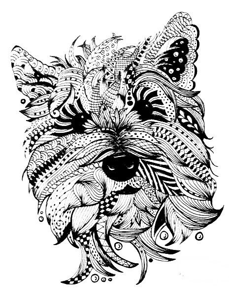 free printable dog coloring pages for adults | Carin Terrier-Doc | Zentangle drawings, Dog coloring page ...