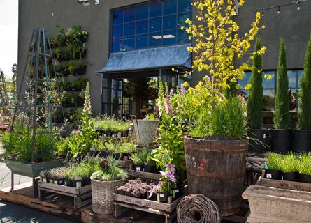Check It Out The Bulletin At Terrain Terrain Is A Gardening Life