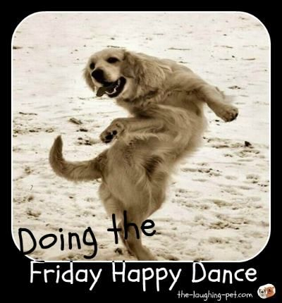 Friday Happy Dance Funny Dog Pictures Dancing Animals Dog Pictures