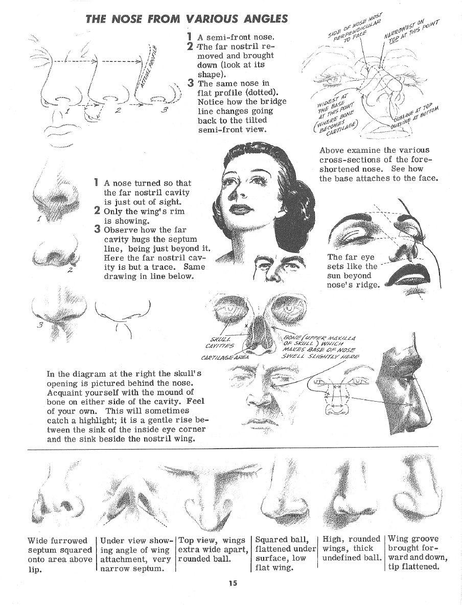 Drawing the Head and Figure - Jack Hamm   Como dibujar   Pinterest ...