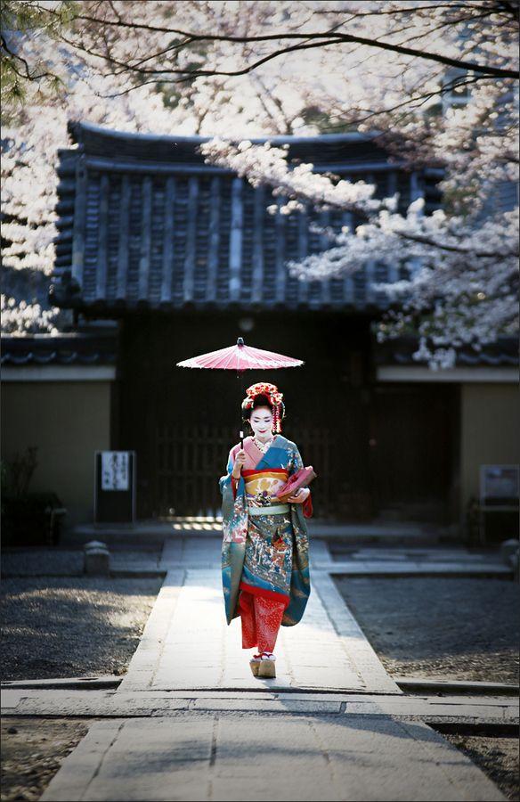 La primavera y el geisha