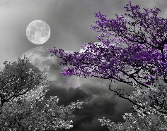 Black White Purple Tree Moon Landscape Modern Wall Art
