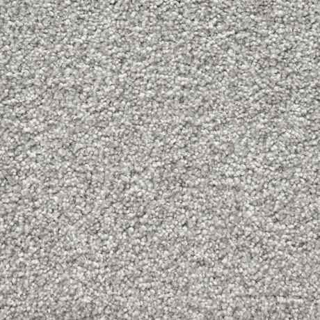 Stone Dust Texture Petprotect 174 Carpet Stainmaster