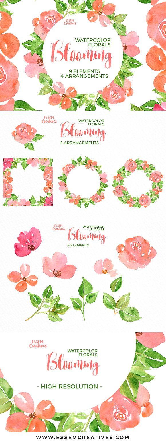 Watercolor Flowers Clipart Floral Clipart Coral Peony Clipart