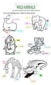english worksheet wild animals body parts kindergarten animal body parts animal. Black Bedroom Furniture Sets. Home Design Ideas