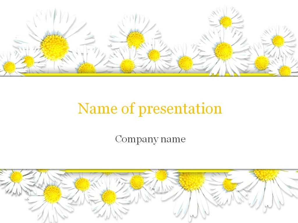 chamomile powerpoint template templates templates powerpoint