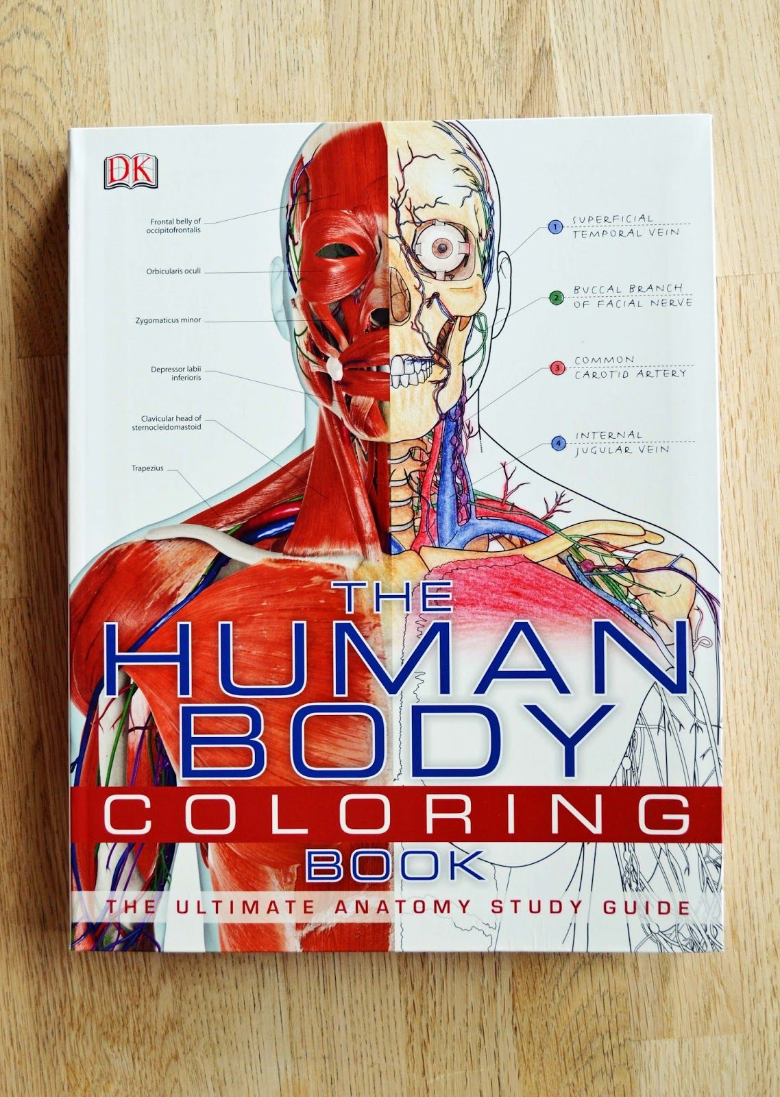 The Human Body Coloring Book | wanna learn something ...