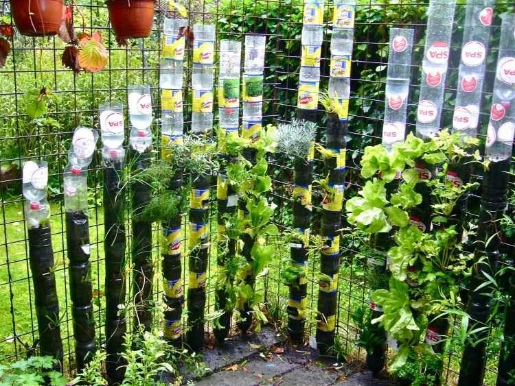 vertikaler garten flaschen - google-suche | gardening | pinterest, Garten und bauen