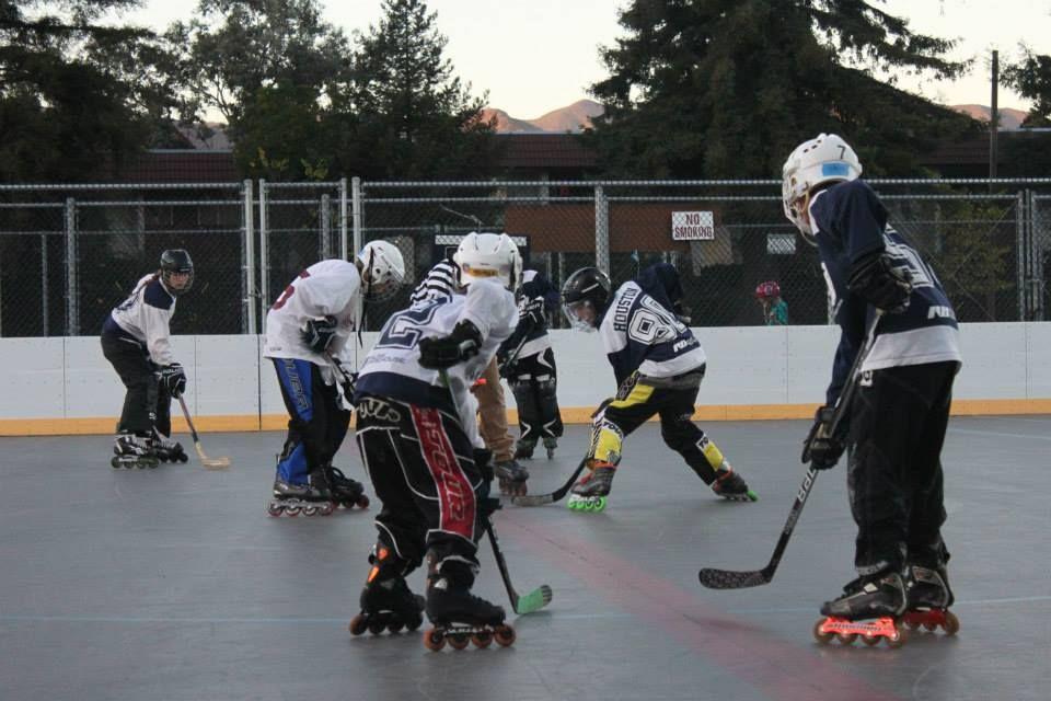 132 For The Love Of Hockey Street Hockey Hockey Youth Hockey