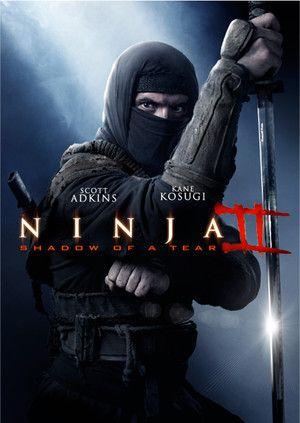 Ninja Ii La Sombra De Una Lagrima 2013 Ver Online Http