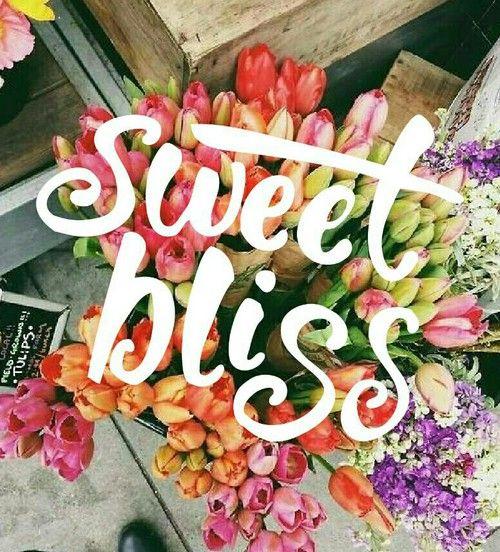 Sweet bliss ❤