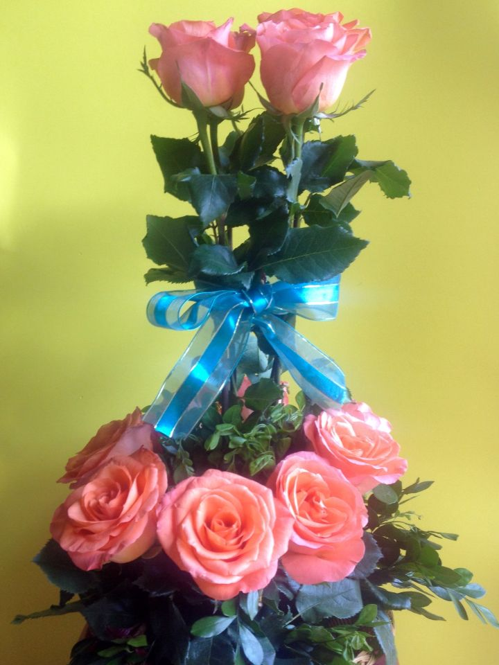Rosas con chonga